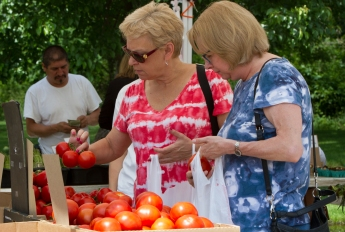 Jean Kendrick, left, looks at tomatoes at the Brookfield farmers market .