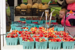 Fiona Stenson looks at raspberries for sale at the Jeffery Farms Inc. stand at the Brookfield farmers market.